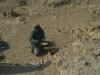 Im Wüstencamp