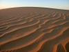 Dünen über Dünen