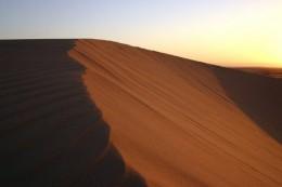 Düne in der Wüste
